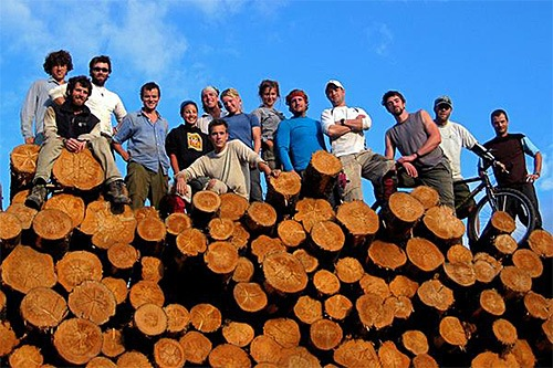 Team standing on pile of logs